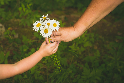 Hands giving and receiving flowers in an act of kindness